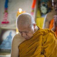 монах :: максим дьяков