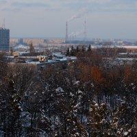 Ура - зима! :: Наталья Тимошенко
