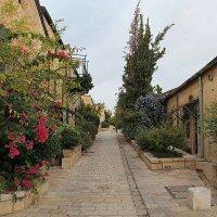Прогулка по Иерусалиму...ноябрь. :: Alex S.