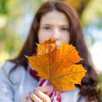 желтая осень :: Марина Климович