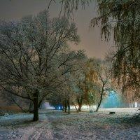 Первый снег :: ALEXANDR L