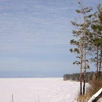 На высоком берегу , на крутом . :: Мила Бовкун