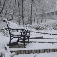 Первый снег, как первое свидание... :: Владимир Николаевич
