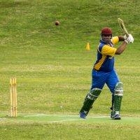 крикет :: Адик Гольдфарб