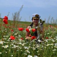 Среди полевых цветов :: Виктор Шандыбин