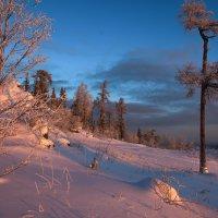 Утро на вершине :: vladimir Bormotov