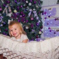 новогоднее настроение :: Дарья Наумова
