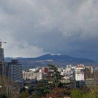 Первый снег ноября :: Наталья (D.Nat@lia) Джикидзе (Берёзина)