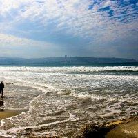 Средиземноморская осень. :: Nikolay Volkov