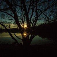 Два солнца :: Андрей Шаронов