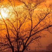 Небо в дыму :: Андрей Пугачев