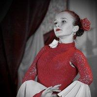 Flamenco :: A. SMIRNOV