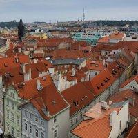 Крыши Златой Праги #3 :: Олег Неугодников