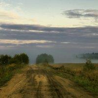 В туман. :: Сергей Израилев