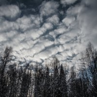 clouds :: Марк Додонов