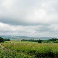 поляна у Синего Камня :: Люша