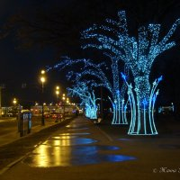 Новый год в Питере :: Жанна Рафикова