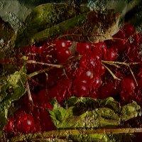 Отпечаток калиновой ветки :: Нина Корешкова