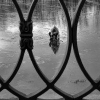 Рыбак, взгляд с набережной :: Николай Белавин