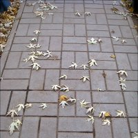 Осенний путеводитель :: Нина Корешкова