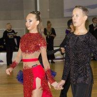 Красивая пара :: Татьяна Гузева