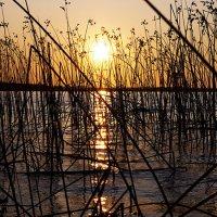 закат на северном озере :: Marika Hexe