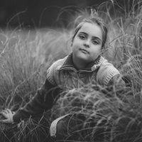Осеннее настроение :: Katrin Kolos