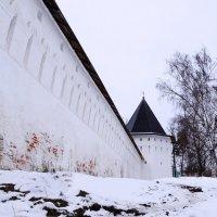 Стены Саввино-сторожевского монастыря :: Владимир Болдырев