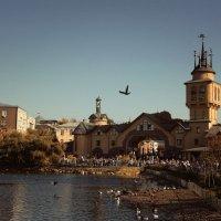 Осенний зоопарк :: Евгеша Сафронова
