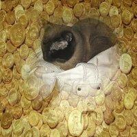 Там Алекс над златом тихонько сопит.... но бдит, мне поверьте, старательно бдит.... :: Tatiana Markova