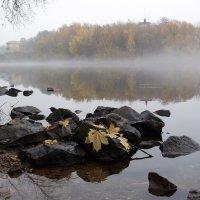 Москва-река :: Михаил Бибичков