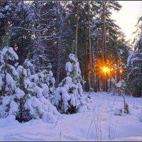 Декабрь :: Владимир Холодный