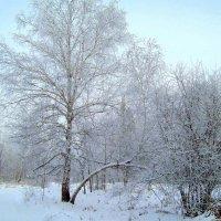 Зима в окресностях Иркутска :: alemigun