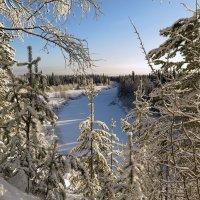 Мороз и солнце-день чудесный...! :: Геннадий Северный