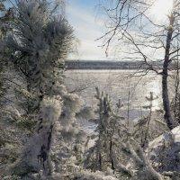 р. Печора замерзает... :: Геннадий Северный