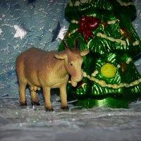 Опустила голову коза-уходить пришла её пора. :: nadyasilyuk Вознюк