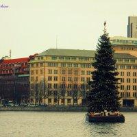Рождественская ель на оз. Альстер :: Nina Yudicheva