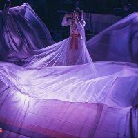 Свадебные зарсовки :: Андрей Молчанов