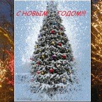 До Нового Года осталось 20 дней!!! :: Тамара (st.tamara)