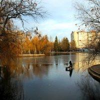 В парке :: Лариса Коломиец