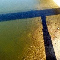 тень моста на Соже :: Александр Прокудин