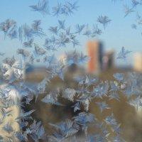 Зимние наброски :: Валерий Чепкасов