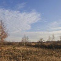 Осенняя фото зарисовка... :: Фёдор Куракин