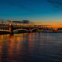 Троицкий Мост в Санкт-Петербурге :: Дмитрий Рутковский