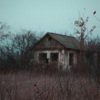 Дом ноября :: Анна Куценко