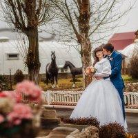 Wedding :: Валерия Ступина
