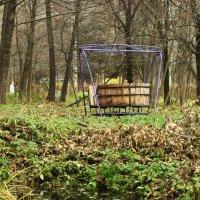 Осень в старом парке :: Юрий Новичков