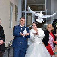 Еще одних поженили... :: донченко александр