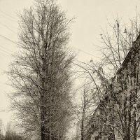 Зима на улице Затонной :: Игорь Герман