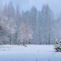 Зима пришла :: Алексей Лунгин